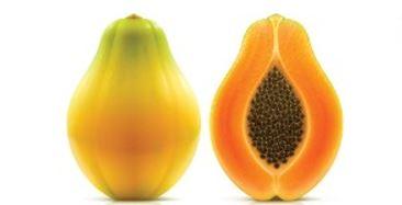 Maradol papayas 8-11-17_1502478201584.JPG