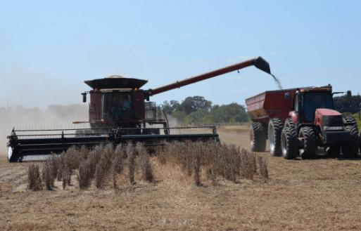 Dry harvest_1505491814472.PNG