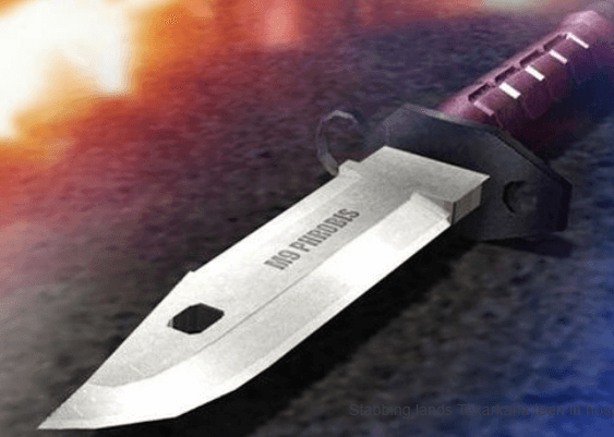 Stabbing death 10.16.17_1508165908993.PNG