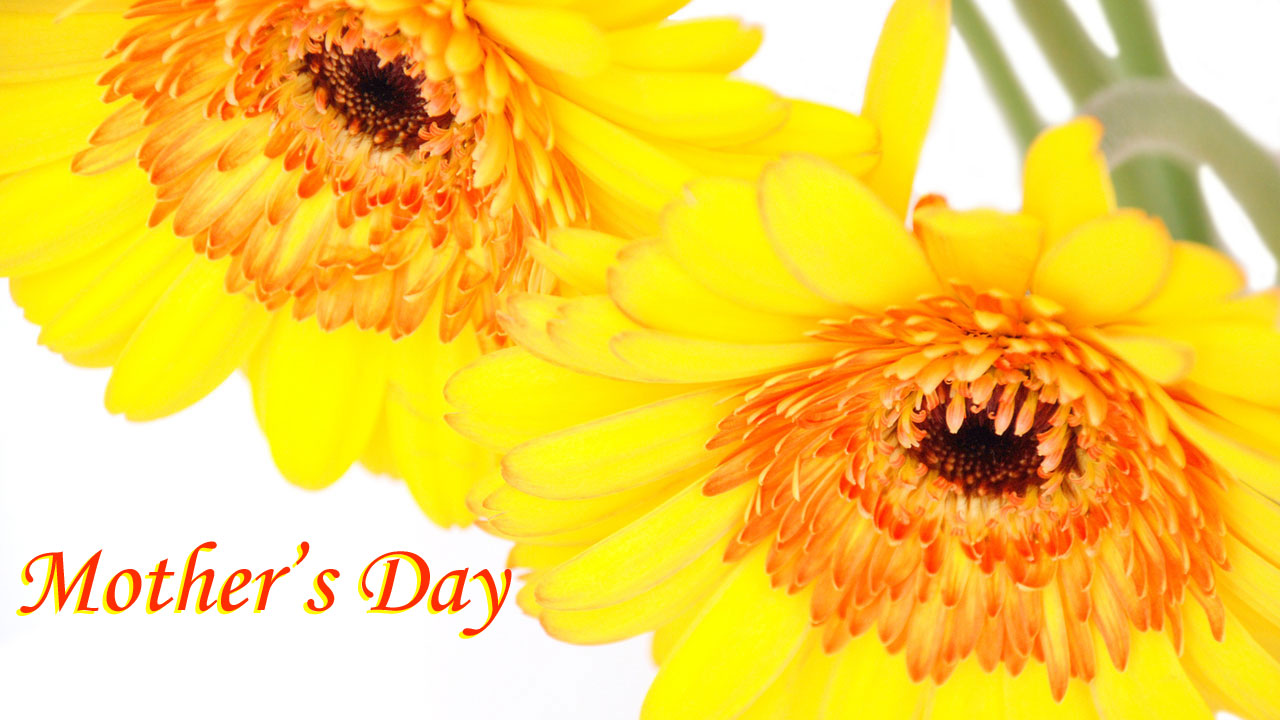 Mother's Day graphic with yellow flowers83319016-159532