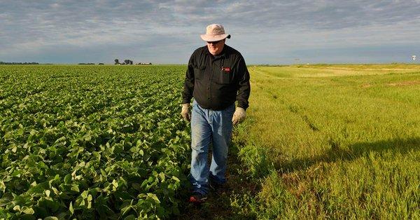 Administration announces $12 billion in aid to farmers hurt by Trump's trade war_1532456764423.jpeg.jpg