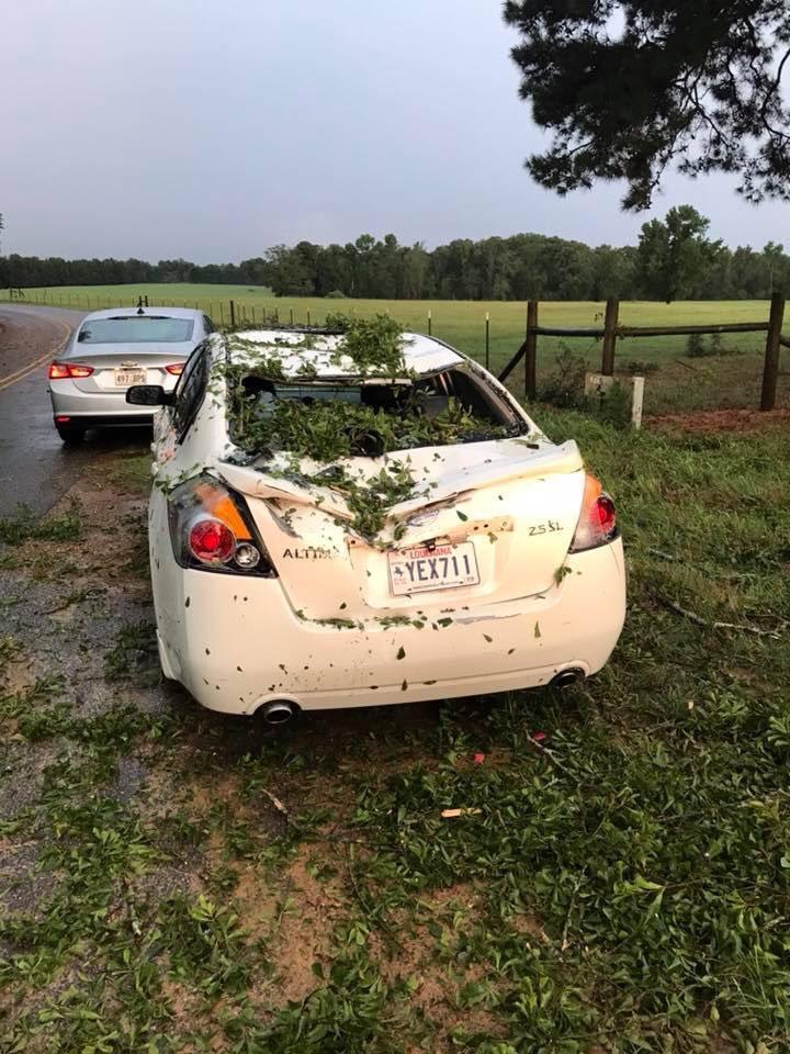 Tree falls on car_1534872105495.jpg.jpg