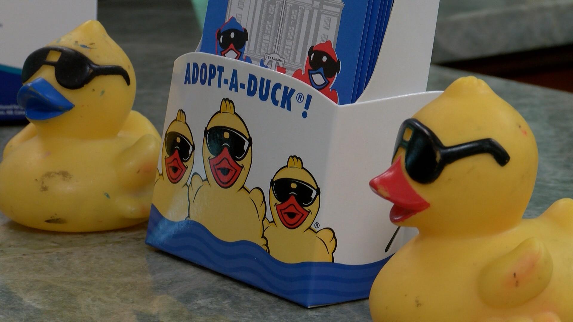 adopt a duck_1533845743102.jpg.jpg