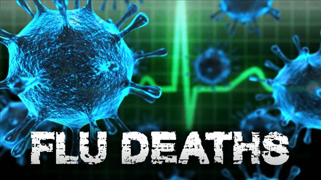 Flu Deaths generic_1539812755995.png.jpg