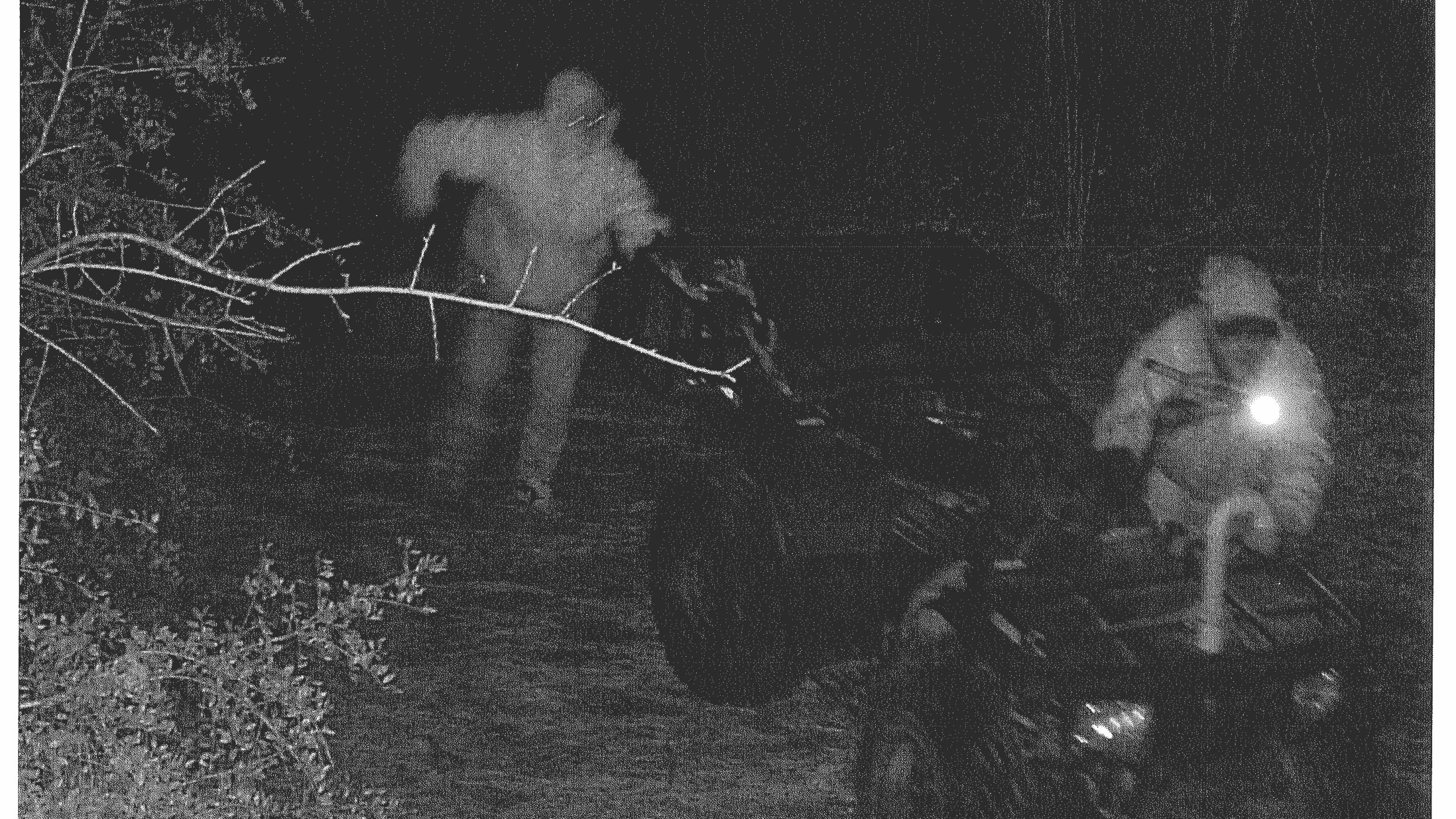 Shelby ATV theft 1_1551443592371.jpg.jpg