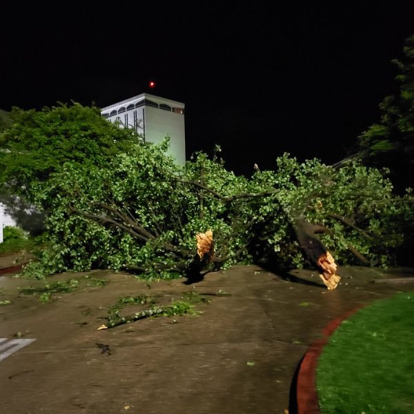 Louisiana Tech Damage