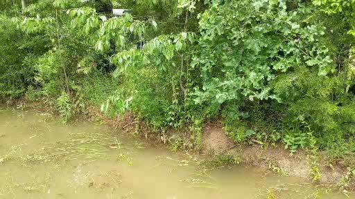 Flooding in Princeton, La
