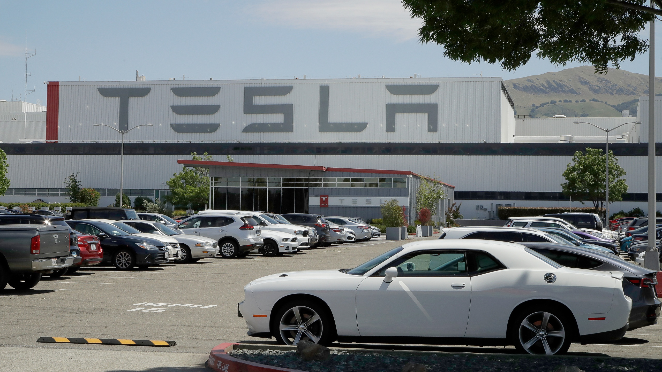 Tesla Electric Car Plant